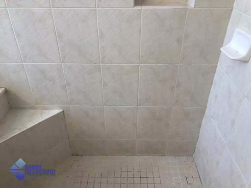 Dirty Shower Grout & tile